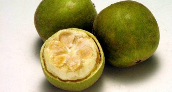 Назван фрукт, оказывающий омолаживающее действие на кровь и замедляющий процессы старения