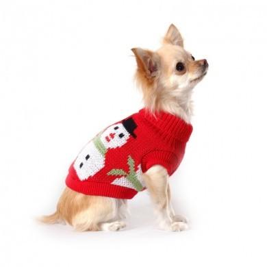 Одежда для маленьких собак своими руками фото